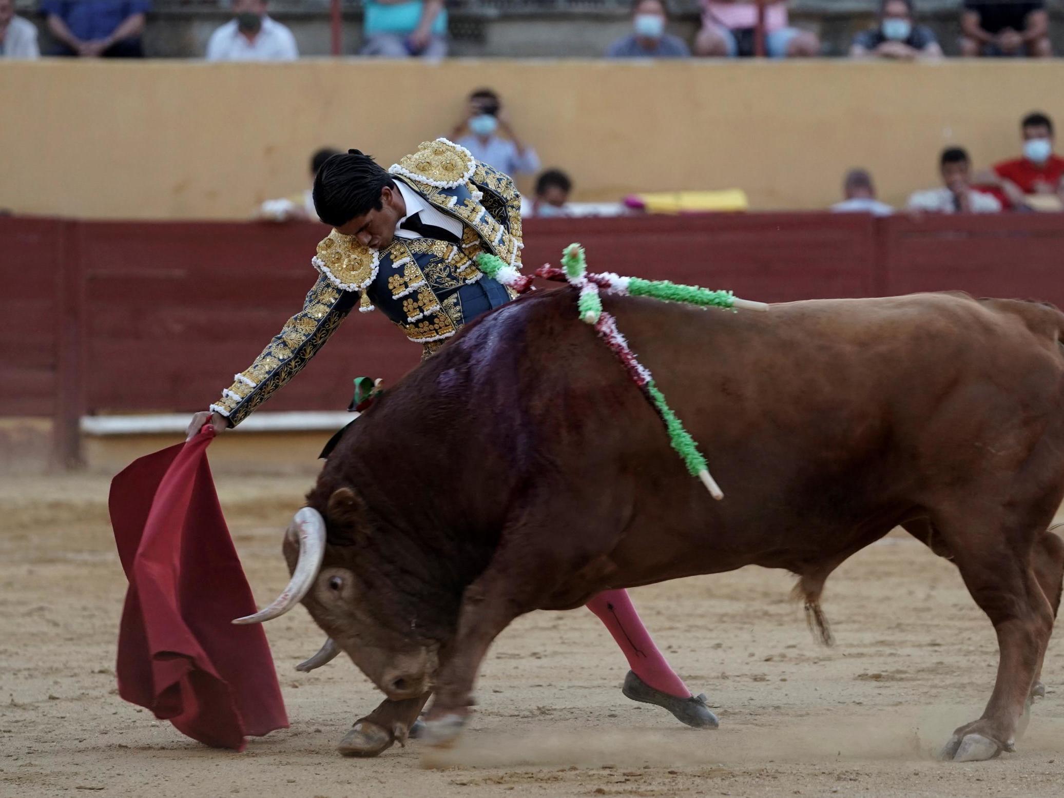 Spain holds first bullfight since coronavirus lockdown amid battle over tradition's future