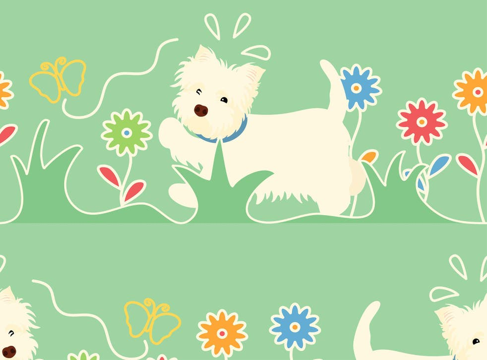 <p>Sunny weather offers little relief for pets, especially those with fur coats, so keep them from overheating with these products</p>