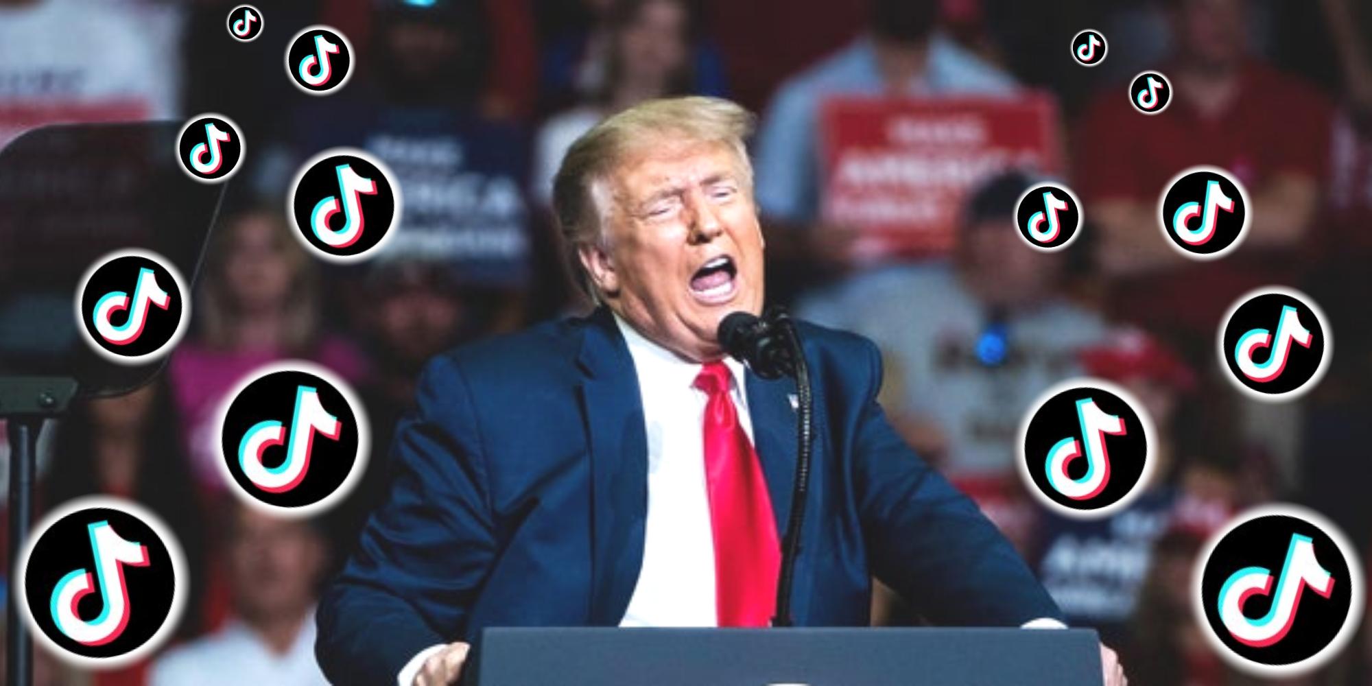 Trump Tiktok