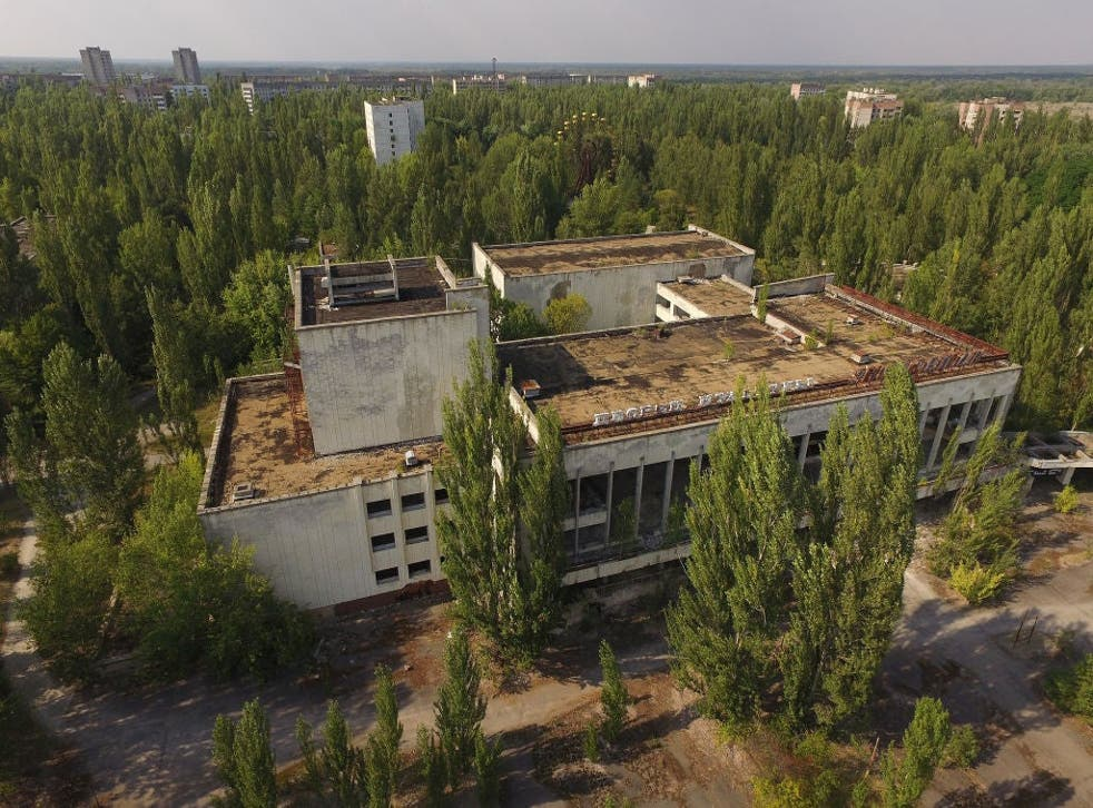 <p>The former Energetika cultural centre in the abandoned city of Pripyat, near the Chernobyl nuclear power plant, on 19 August 2017</p>